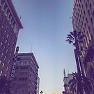 Hollywood Boulevard Buildings 1 by Jim Fisher