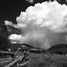 Colorado Hail Storm by Bryce Bradford