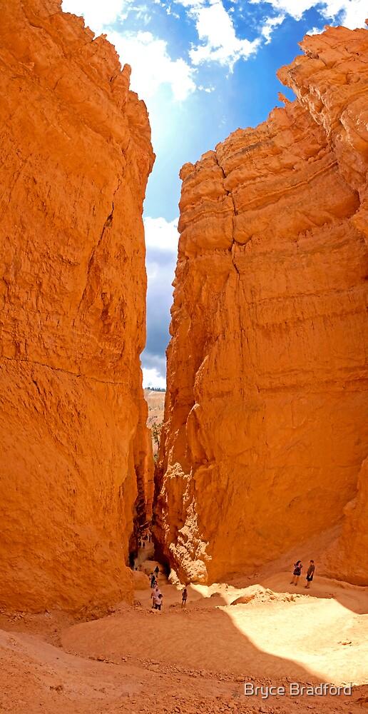 Bryce Canyon, Utah by Bryce Bradford