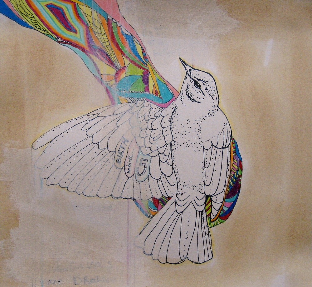 Rainbow Bird by Katie Young