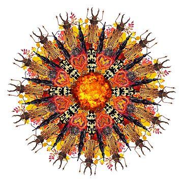 orange flame bugs mandala by burenkaUA