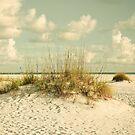 Tropical Beach Vibes by OLIVIA JOY STCLAIRE