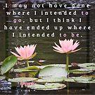 Waterlily Quotation (Douglas Adams) by Rachel Jeffrey