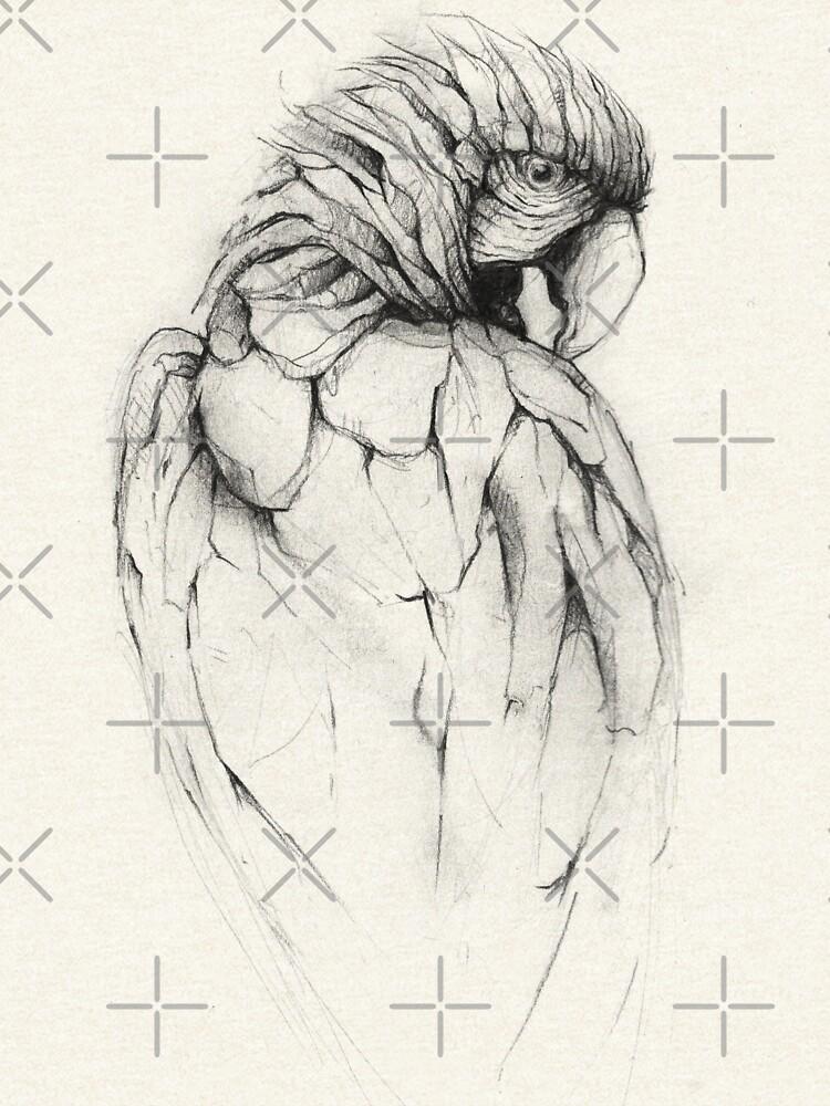 Parrot by mikekoubou