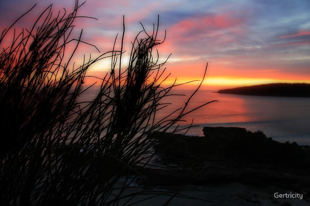 Pambula Beach Sunrise by Gertricity