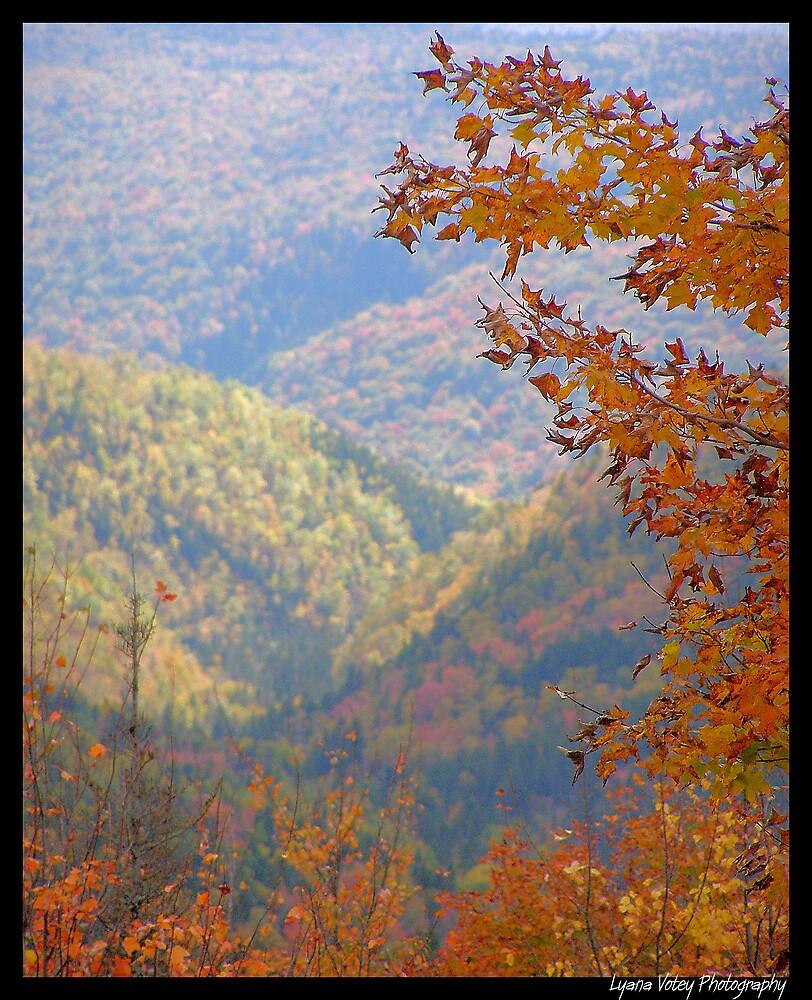 Autumn Orange by Lyana Lynn