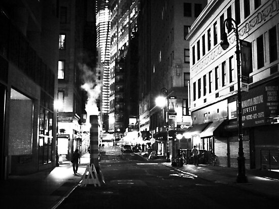 When Night Falls by Vivienne Gucwa