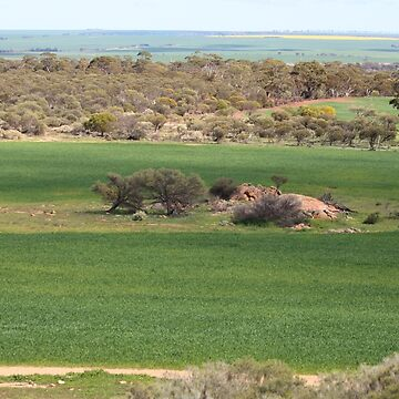 View from Buntine Rock by kalaryder
