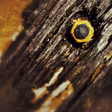 Wood Bolt Grunge  by CassieGannon