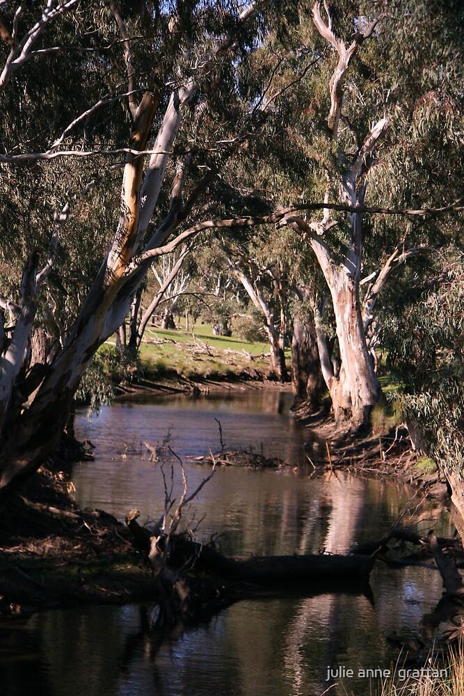 Another Creek  by julie anne  grattan