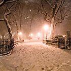 Winter Fairytale New York City by Vivienne Gucwa
