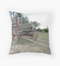 Rustic country accomodation Throw Pillow