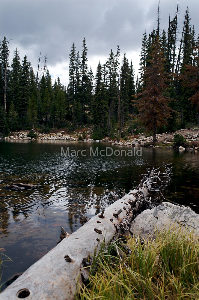 Mountain Serenity by Marc McDonald