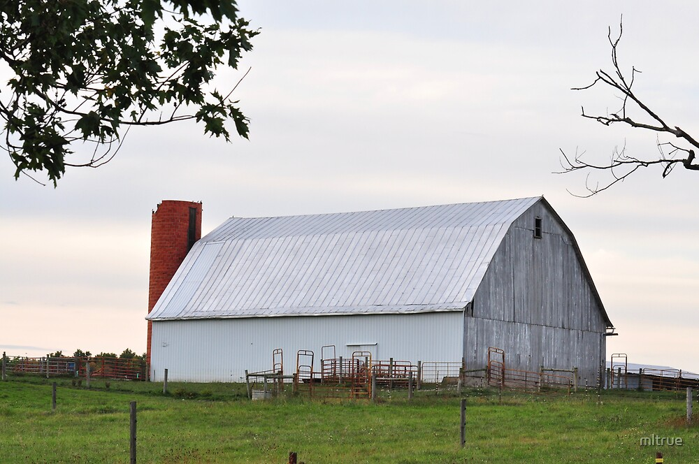 White Barn- Hartford City by mltrue