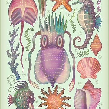Marine Creatures V by vladimirsart