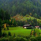 Autumnal... by su2anne