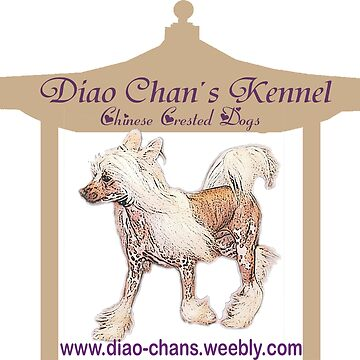 Diao Chan's Chinese Crested Dogs by Batiste