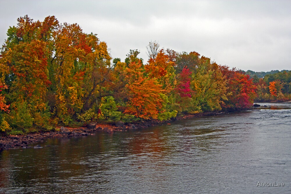 the Colors of Fall by AntonLee