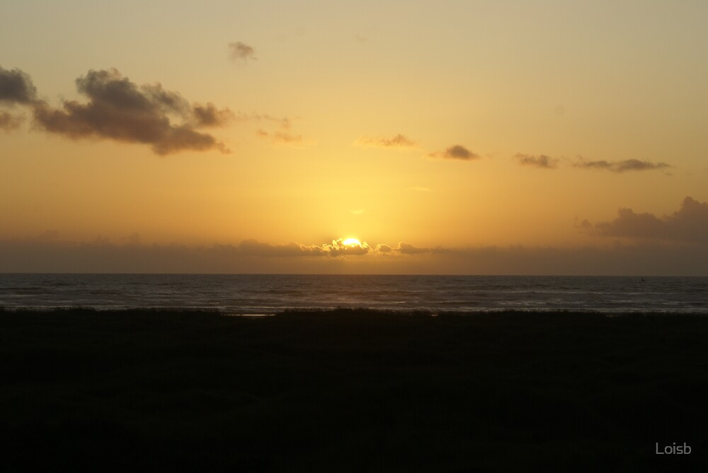 Sunset at Ocean Shores by Loisb