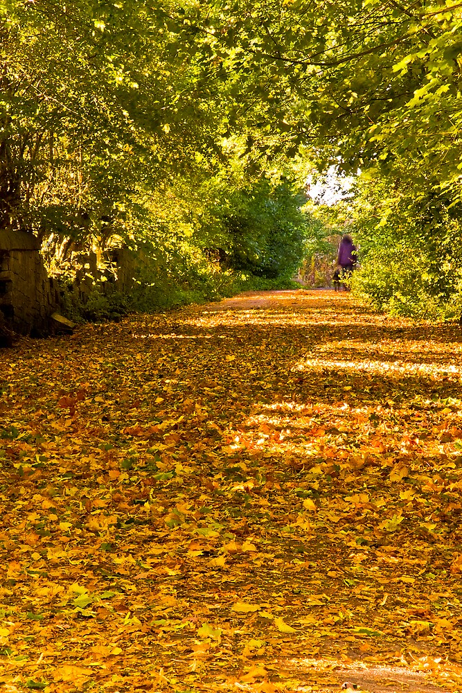 A Beautiful Autumn Morning by Chris Clark