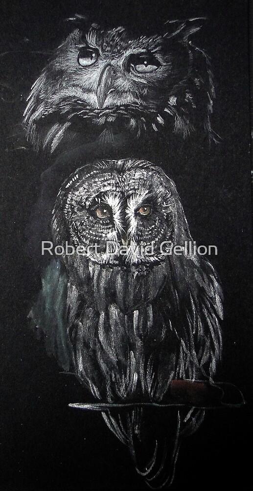 Owls by Robert David Gellion
