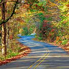 On The Road Again by RickDavis