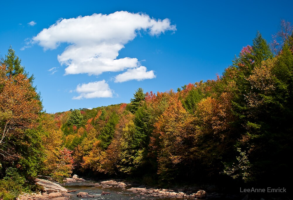 Perfect Autumn Day by LeeAnne Emrick