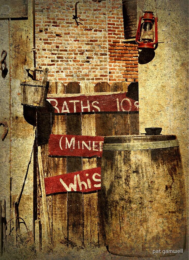Ten Cents a Bath by pat gamwell
