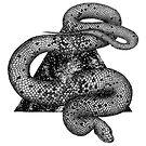 Cosmic Snake by ECMazur