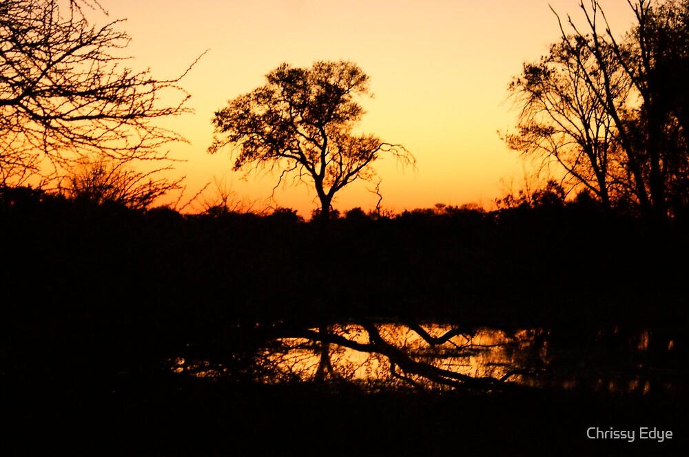 Botswana  by Chrissy Edye