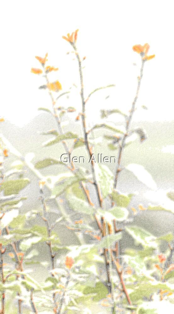 Red Flowers Watercolour Effect by Glen Allen
