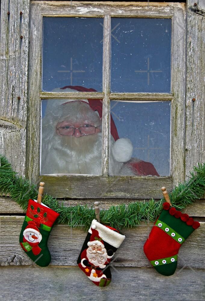 Santa's Stockings by Maria Dryfhout