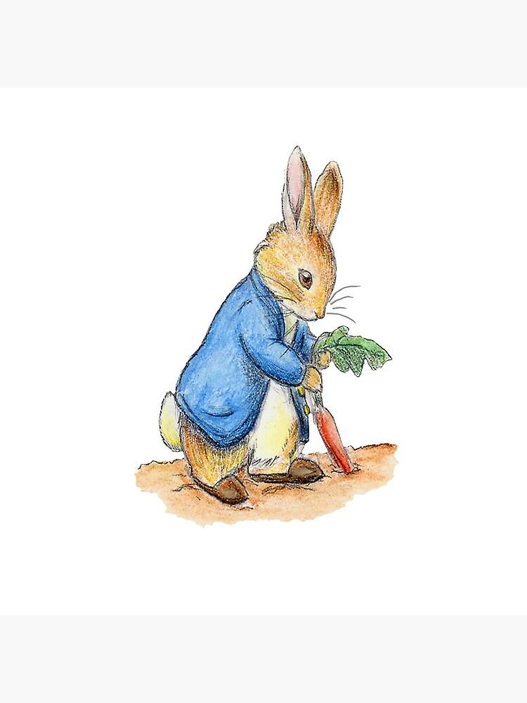 Kindergartenfiguren, Peter Rabbit, Beatrix Potter. von TOMSREDBUBBLE
