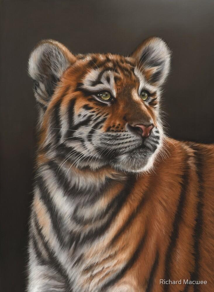 Tiger Cub by Richard Macwee