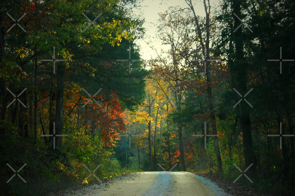Ozark Mountain Road by Lisa Putman