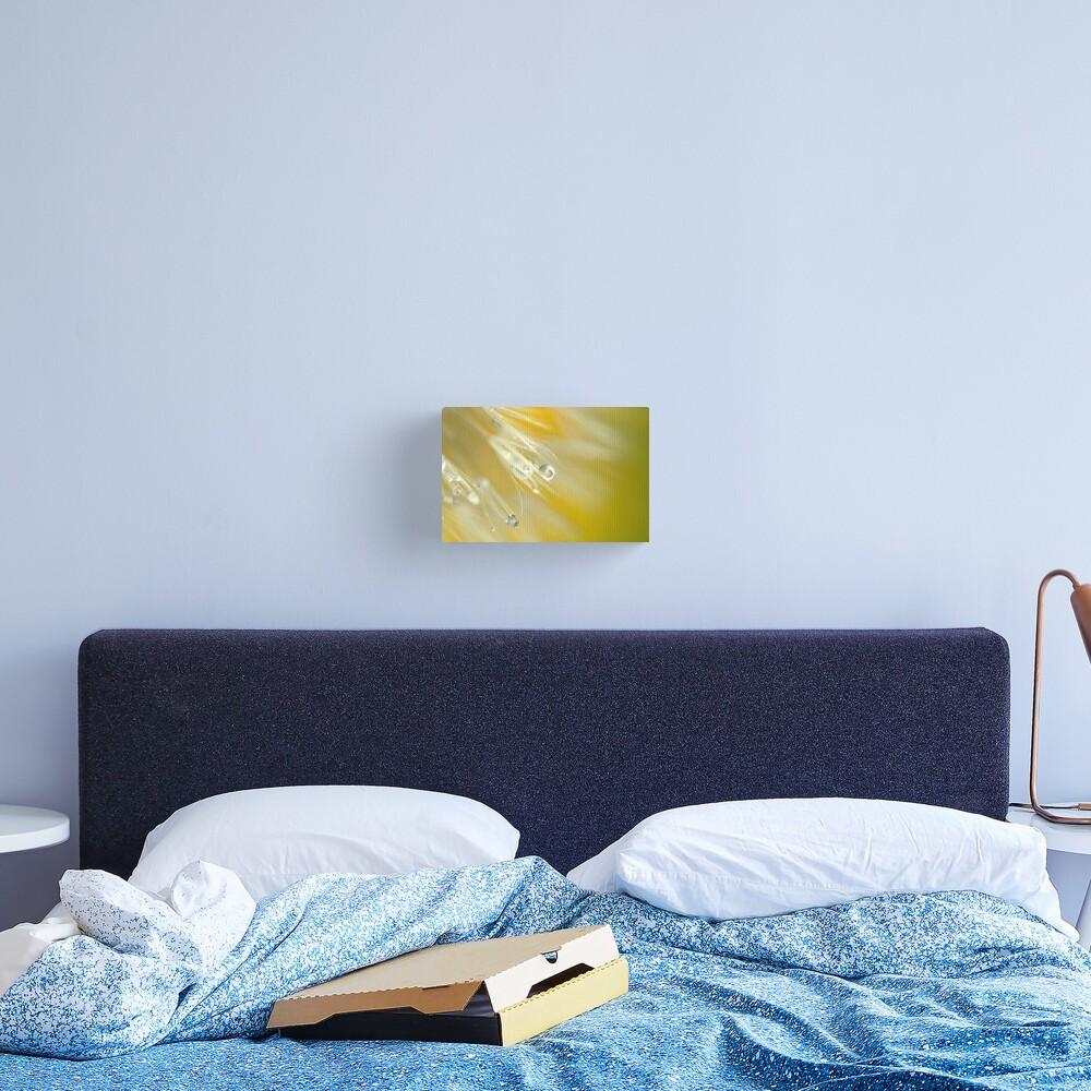 Dandelion in Yellow Canvas Print