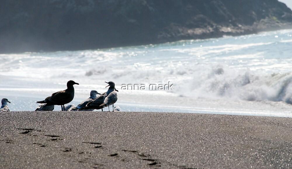 Beach Birds 2 by anna mark