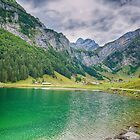 Seealpsee Appenzell Switzerland by Susan Dost