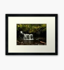 A Hint of Autumn Framed Print