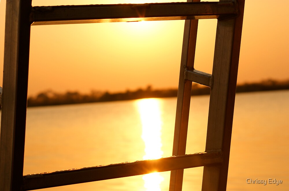 ladder and sun  by Chrissy Edye