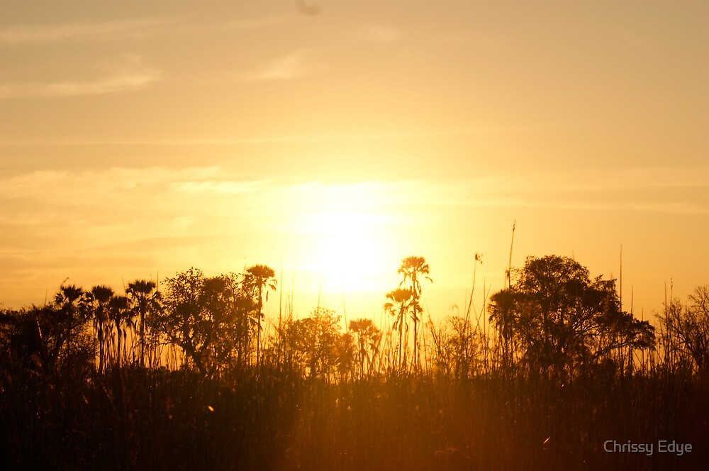 more African sunset by Chrissy Edye