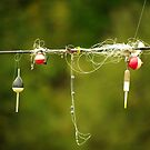 """No Fishing from Bridge..........."""" So, we just going to hang around!!!"""" by Larry Llewellyn"""