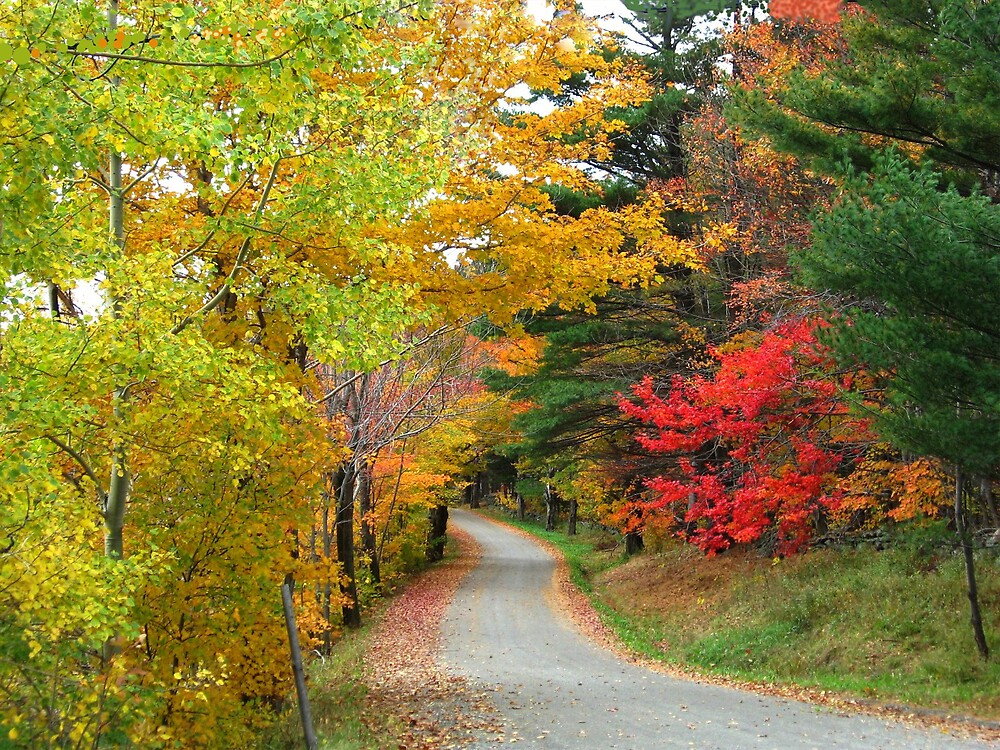 Vermont country road by chinet