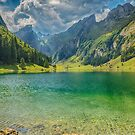 Rain Is Coming - Seealpsee Switzerland by Susan Dost