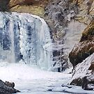 Frozen Falls by Tibby Steedly