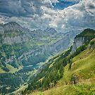 Bird Eye View From Top Of Ebenalp Switzerland by Susan Dost
