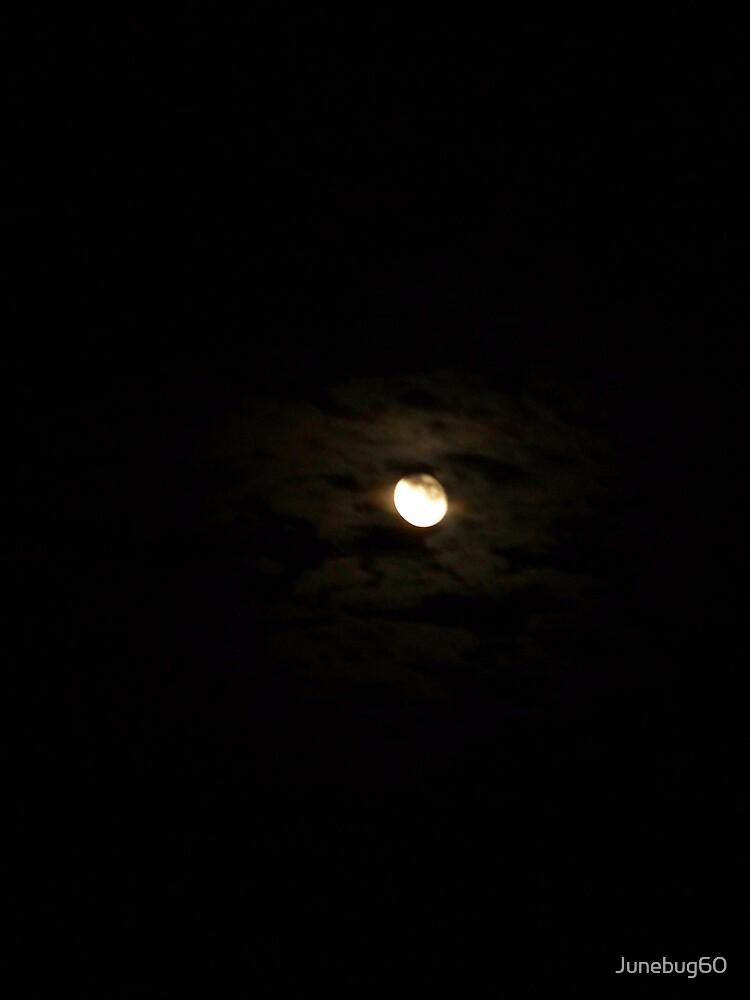 October Moon by Junebug60