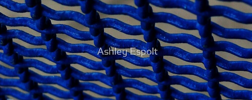 Fenced in Blue by Ashley Espolt