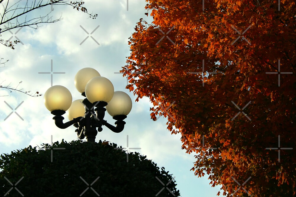 Lamp Post in Autumn by Lisa Putman