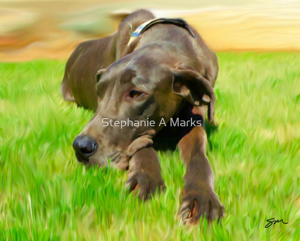 Bubba by Stephanie A Marks